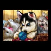 Моя собака | сервис uplata.ua
