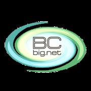BC Big.Net | сервис uplata.ua