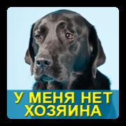 "Мой Друг - МБФ ""ЦСПМ"" | сервис uplata.ua"